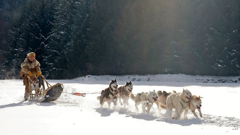 The Great Iditarod