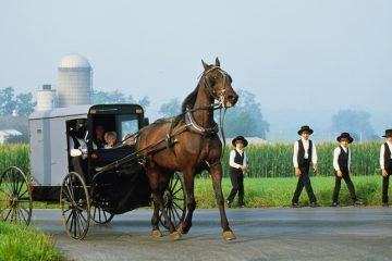 American Culture and History Lesson - The Amish Communities in the U.S.