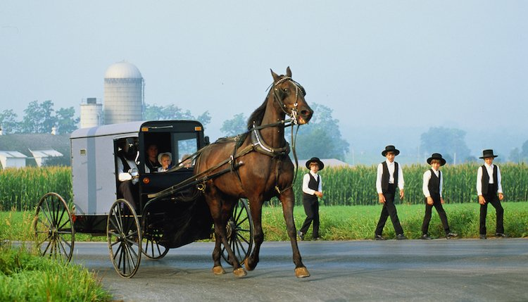 American Culture and History Lesson - The Amish