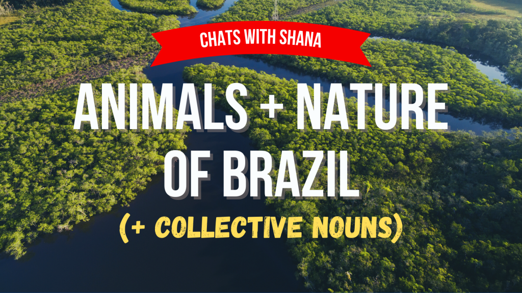 Animals and Nature of Brazil